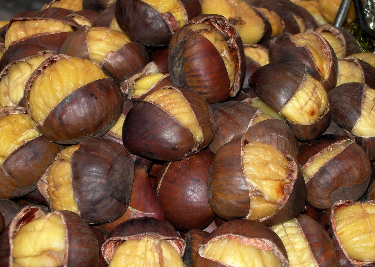 chestnuts2